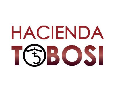 COSTA RICA Hacienda Tobosi Caturra Black Honey